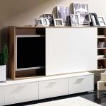 tv-furniture-and-decoration4-2.jpg
