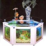 unusual-fish-tanks-ideas1-14.jpg
