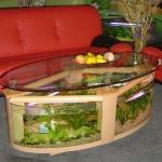 unusual-fish-tanks-ideas1-2.jpg