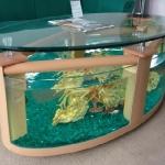unusual-fish-tanks-ideas1-3.jpg