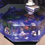 unusual-fish-tanks-ideas1-9.jpg