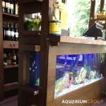 unusual-fish-tanks-ideas2-1.jpg