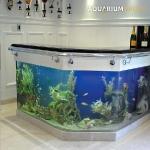 unusual-fish-tanks-ideas2-3.jpg