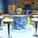 unusual-fish-tanks-ideas2-4.jpg