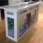 unusual-fish-tanks-ideas2-5.jpg