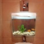 unusual-fish-tanks-ideas5-3.jpg