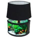 unusual-fish-tanks-ideas6-1.jpg