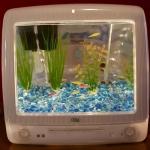 unusual-fish-tanks-ideas7-1.jpg
