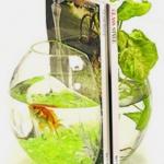 unusual-fish-tanks-ideas8-4.jpg