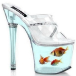 unusual-fish-tanks-ideas8-6.jpg