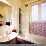 update-parisian-studio-in-indian-style-bathroom2.jpg