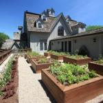 vegetable-garden-ideas1-3.jpg