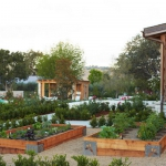vegetable-garden-ideas1-6.jpg