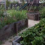 vegetable-garden-ideas1-7.jpg