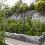 vegetable-garden-ideas1-9.jpg