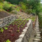vegetable-garden-on-slope-ideas1.jpg