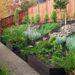 vegetable-garden-on-slope-ideas2.jpg