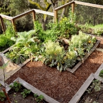 vegetable-garden-on-slope-ideas3.jpg