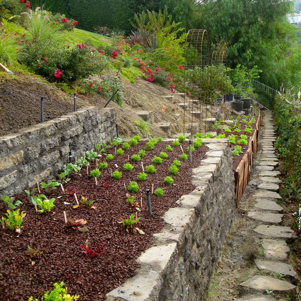 Vegans Living Off the Land: Gardening on a hill, bank ... on Sloping Garden Ideas id=37485