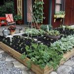 vegetable-garden-ideas2-1.jpg