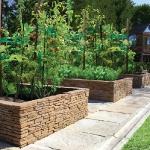 vegetable-garden-ideas3-5.jpg