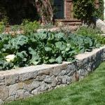 vegetable-garden-ideas3-6.jpg