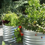 vegetable-garden-ideas5-1.jpg