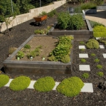 vegetable-garden-ideas5-6.jpg