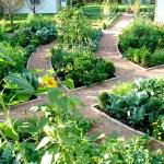 vegetable-garden-ideas7-3.jpg