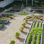 vegetable-garden-ideas7-4.jpg