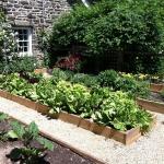 vegetable-garden-paths-ideas11.jpg