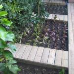 vegetable-garden-paths-ideas2.jpg