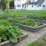 vegetable-garden-paths-ideas3.jpg