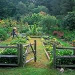 vegetable-garden-paths-ideas9.jpg