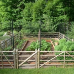 vegetable-garden-fence-ideas1.jpg