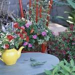 vintage-garden-pots1-9.jpg