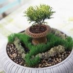 vintage-garden-pots3-2.jpg