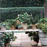 vintage-garden-pots6-9.jpg