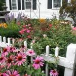 vintage-rose-inspiration-garden9.jpg