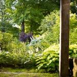 wild-garden-inspiration-flowers10.jpg