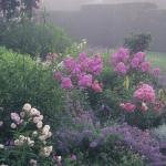 wild-garden-inspiration-flowers13.jpg