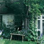 wild-garden-inspiration-liana2.jpg