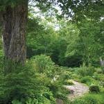 wild-garden-inspiration-naturalness1.jpg