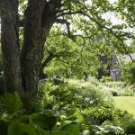 wild-garden-inspiration-naturalness3.jpg