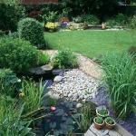 wild-garden-inspiration-pond1.jpg