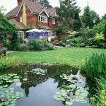 wild-garden-inspiration-pond2.jpg