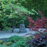 wild-garden-inspiration-secret-nook2.jpg
