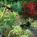 wild-garden-inspiration-secret-nook6.jpg