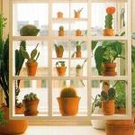 window-shelves-design-ideas1-1.jpg