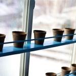 window-shelves-design-ideas2-4.jpg